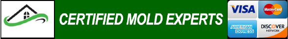 Basement Mold Removal Kitchen Mold Inspection Attic Mold Remediation Cranford NJ 07016 Bathroom Mold Testing Closet