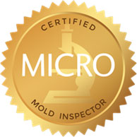 Basement Attic Mold Remediation Atlantic County NJ Mold Testing Attic Mold Inspection Atlantic County NJ Mold Removal Attic Basement