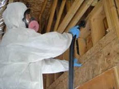 Mold Inspection NJ 08092